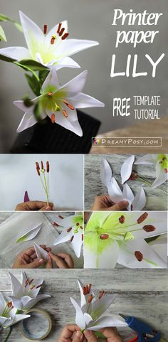 How to make paper Lily flower from printer paper, FREE template - - In this free paper Lily flower tutorial, plus the free template, you will find how easy you could DIY your paper flowers from very simple suppliers. Handmade Flowers, Diy Flowers, Fall Flowers, Construction Paper Flowers, Papier Diy, Fleurs Diy, Rainbow Paper, Crepe Paper Flowers, Flower Paper
