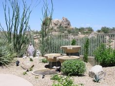 28 best desert landscaping ideas images on pinterest desert