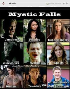 Shared by Delicate Virgø. Find images and videos about funny, the vampire diaries and tvd on We Heart It - the app to get lost in what you love. Vampire Diaries Memes, Vampire Diaries Damon, Wallpaper Vampire Diaries, Serie The Vampire Diaries, Vampire Daries, Vampire Diaries The Originals, Vampire Diaries Spoilers, The Vampire Diaries Characters, Vampire Quotes