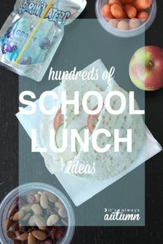 hundreds of school lunch ideas to make packing lunches for your family easier - quick lunches healthy lunches, gluten & nut free lunches, etc! by joyce