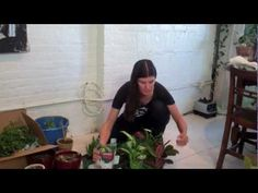 How to Green Your Home (Part 2): Build a Mason Jar Herb Garden - YouTube