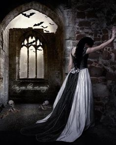Welcome To The Goblin Ball Vampires, Gothic Fantasy Art, Dark Artwork, Victorian Goth, Goth Art, Dark Photography, Dark Beauty, Gothic Beauty, Goblin