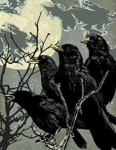 "Crows Ravens: ""#Crows at Night."""