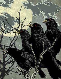 Crows At Night