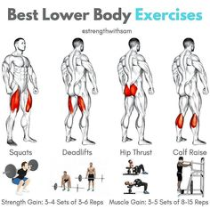 how to get bigger thighs, how to bulk up, how to get jacked, legal steroids, bulking supplements, how to bulk up Body Training, Training Plan, Calf Raises, Squats, Calves, Routine, Exercise, Fitness, Gymnastics