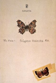 """Nabokov's drawings  The drawings of  butterflies done by  Vladimir Nabokov were intended    for """"family use."""" He made  these on  title pages of various editions  of   his works as a gift to his wife and   son and sometimes to other    relatives…  http://www.nabokovmuseum.org/drawings1.html"""
