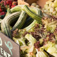 Summer Produce @ preppings.com