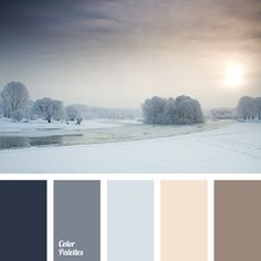 blue-gray, brown color, chocolate color, dark gray, gray color, gray-brown, palette for winter, shades of blue and gray, shades of gray, silver color, winter color palette, winter colors, winter palette.