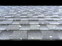 Removing Lichen From Asphalt Shingles - Brilliant Hard Scapes Roof Cleaning, Cleaning Chemicals, Pressure Washing Companies, Roof Sheathing, Types Of Roofing Materials, Asphalt Roof Shingles, Washing Windows, Mildew Remover, Copper Roof