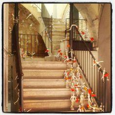 Ninot escales