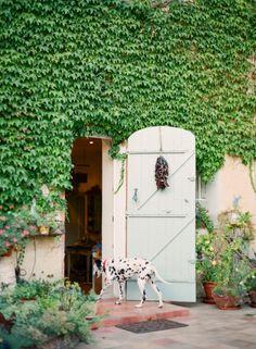 Le Clos des Frères Gris, Provence, France