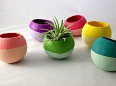 Small package, big design. These cheerful little planters will brighten up any boring living space or bland office. And the price? $7 each—a stylish holiday steal. —Seaandasters, $7