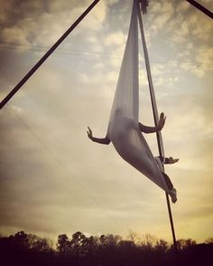 Flying like a bird. I love this pose I saw on silks and adapted for hammock…