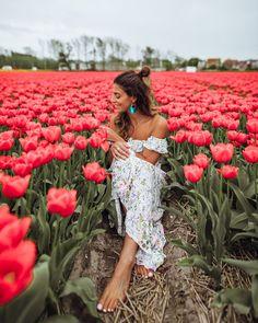 girl in tulip fields in Lisse Spring Photography, Beauty Photography, Portrait Photography, Picture Instagram, Tulip Festival, Tulip Fields, Artsy Photos, Insta Pictures, Foto Pose