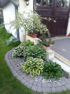 48 Magnificence Small Backyard Landscaping Decor Ideas Outdoor And