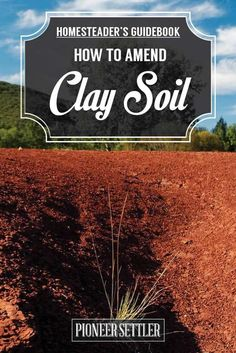 How to Amend Clay Soil | The Homesteader's Guide