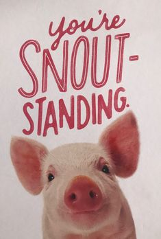 I got this as a postcard yesterday from a friend of mine who knows I ❤️ piggies!