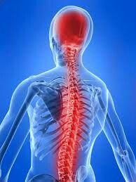 The pain of myelitis