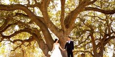 The Clubhouse at Boundary Oak Weddings | Get Prices for East Bay Wedding Venues in Walnut Creek, CA
