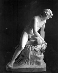 Narcissus - greek-mythology Photo