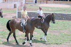 President Reagan riding horses with President João Baptista de Oliveira Figueiredo of Brazil, Brasilia, Brazil. December 1st, 1982.