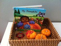 My attempt at Reggio Emilia inspired pumpkin center.