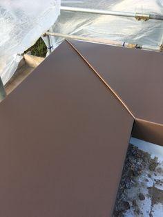 Zinc Roof, Metal Roof, Glass Handrail, Metal Cladding, Steel Columns, Roof Lines, Roof Design, Custom Metal, Sheet Metal