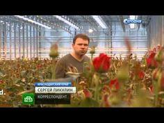 Holland verliest bloemenmarkt in Rusland!?