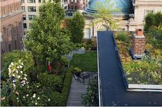 A 6000 sq. ft. green roof garden for a penthouse in Little Italy, New York City. Designed by the owners, Lisa and Chris Goode along with architect Andrew Berman in 2006. The Goodes have since formed a company called Goode Green.