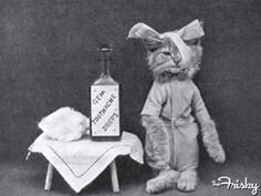 Proof that people used to dress up cats since forever