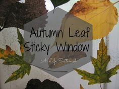 {Toddler Explorations} Autumn Leaf Sticky Window :: Reggio inspired invitation :: open-ended Fall Science activity :: categorization and color sorting :: From A Life Sustained