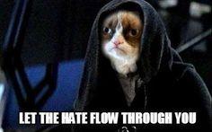 Grumpy Cat/Star Wars