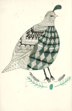 Nature. - Katt Frank Illustration.