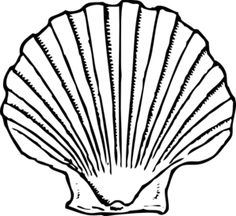 shell clip art black and white sea shell clipart shells clipart rh pinterest com seashell clip art free seashell clip art free images