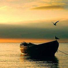 Faith Alone...☆☆☆ #faith #alone #saudades #pai #nature #pic #photography #photo #sunset #sunshine #summertime #love #lovely #inspiração #insporation #hope #godisgood #noite #noiteboa #boanoitee #boanoiteee #boanoite #goodnight #follow4follow #instagram