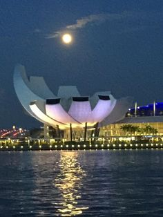 a beautiful shot from iphone 6 plus photo iphone 6 plus opera house
