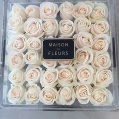 Uploaded by Cris Figueiredo. Find images and videos about white, flowers and rose on We Heart It - the app to get lost in what you love. My Flower, White Flowers, Beautiful Flowers, Pretty Roses, White Roses, Beautiful Bouquets, Beautiful Life, Sacher Wien, Expensive Taste
