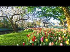 Holland's most beautiful Landmarks