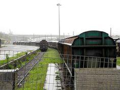 rain on trains