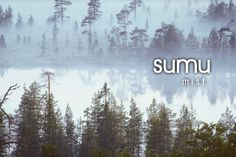 Finnish words Language Study, Language Lessons, Learn Finnish, Finnish Words, Finnish Language, Foreign Languages, Mists, Vocabulary, Fun Facts