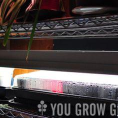 Build a D.I.Y Lighting System