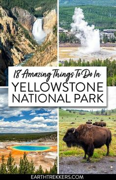 Yellowstone National Park: best things to do, with advice on how to avoid the crowds, spot wildlife, and have an amazing experience. parks 18 Best Things to do in Yellowstone National Park Yellowstone Vacation, Yellowstone Park, West Yellowstone Montana, Wyoming Vacation, Visit Yellowstone, In Dubai, Us National Parks, Grand Teton National Park, Badlands National Park