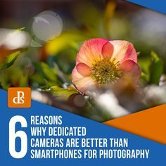 In this article, we'll walk you through 6 important reasons why dedicated cameras are better than smartphones for photography still. You may be surprised! Glass Photography, Dslr Photography Tips, Digital Photography School, Creative Photography, Iphone Photography, Travel Photography, Smartphone Hacks, Best Smartphone, Android Smartphone