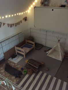 Diy Bunny Cage, Diy Bunny Toys, Diy Guinea Pig Cage, Bunny Cages, Bunny Beds, Pet Bunny Rabbits, Bunny Room, Bunnies, Rabbit Shed