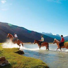グレノーキー乗馬体験。器具のレンタルはもちろん、乗る馬も気性が温厚で優しい子が多く、馬のサイズも自分の身長に合わせて選んでくれるので安心。