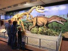 Vernal Utah One Tank Trip of the Week Dinosaur Land, Dinosaurs, Breathe In The Air, Travel And Tourism, Travel Tips, Travel Ideas, Vacation Places, Vacations, Festivals Around The World