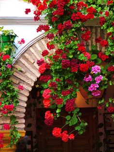 I love the scalloped edge of the pink brick arch, the white walls and draped flowers