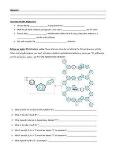 transcription and translation practice worksheet 1 teaching genetics pinterest. Black Bedroom Furniture Sets. Home Design Ideas