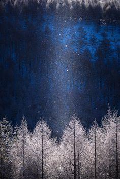【行ってみた】ダイヤモンドダストが見られる長野県霧ヶ峰高原へ撮影しました! | PASHADELIC