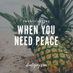 20 Bible Verses When You Need Peace